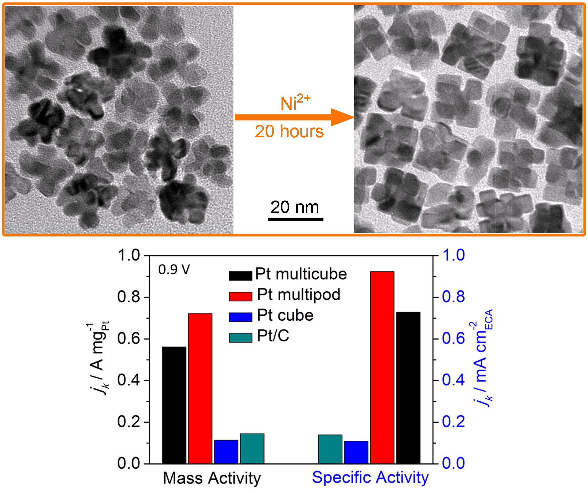揭示了镍离子在铂纳米晶体结构转变过程中的表面能